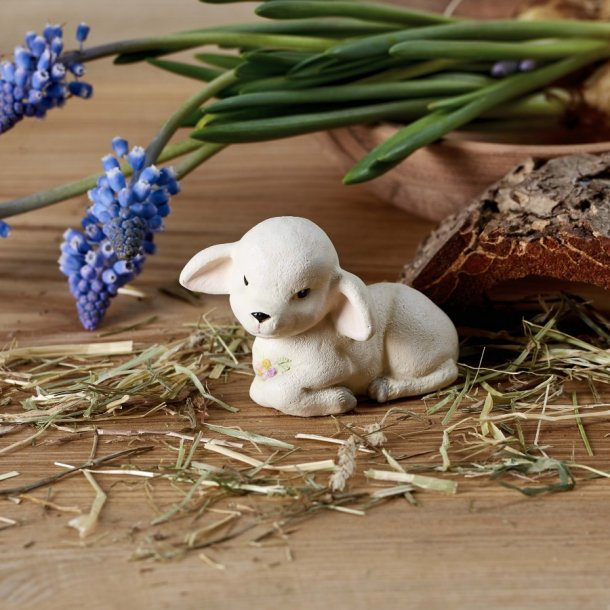 Lammet Lammi
